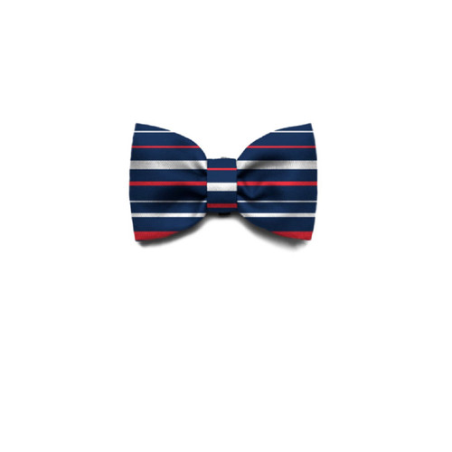 Zee.Dog Zee Dog Rocket Dog Puppy Bow Tie attachs to collar SMALL
