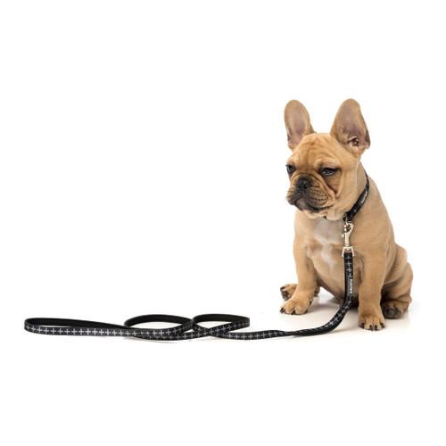 FuzzYard Yeezy Extra Small Collar Adjustable Neoprene Black XS Puppy Dog Collar