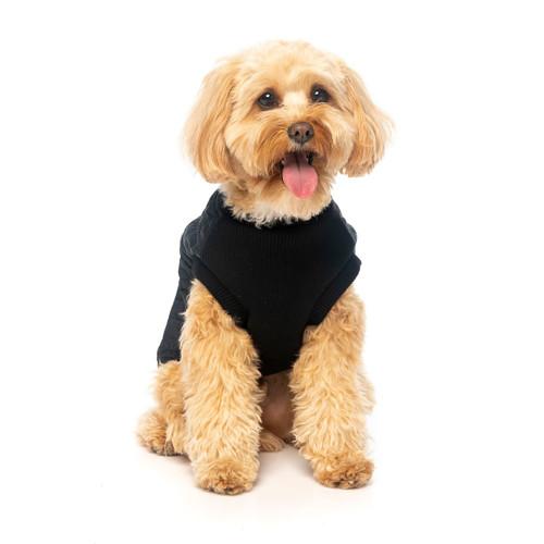 Fuzzyard black MacGyver Harness Jacket warm dog winter coat zip up jacket