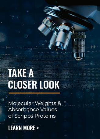 sub-banner-4-molecular-weights.jpg