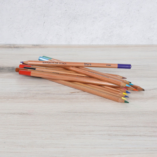 Watercolor Pencil Set - 24 Pieces
