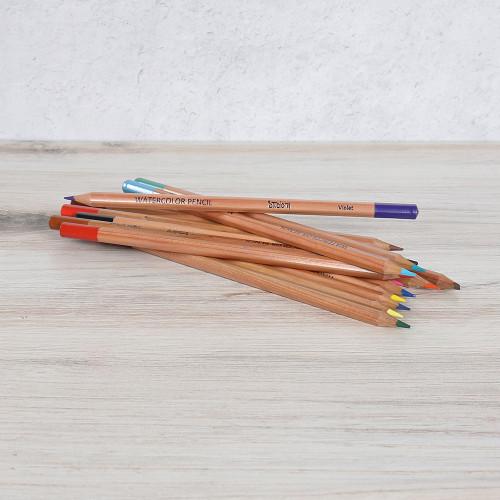 Watercolor Pencil Set - 24 Pieces