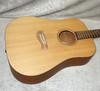 USA Tacoma DM9 acoustic guitar with hardshell case