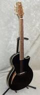 NEW! ESP LTD TL-6 acoustic electric guitar in black finish