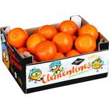 MYA Moroc Clementines, 4lb