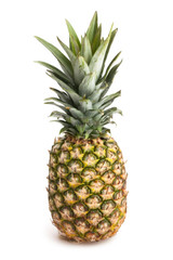Pineapple (Single unit)