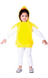Little Baby Chick Custume