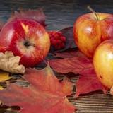 P+D Autumn Apples Lunch Napkins, 20pk