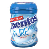 Mentos Fresh Mint Fruit Gum 30pc