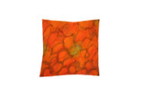 Sunset Reflections Pillow