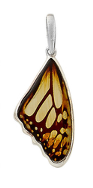 Butterfly Wing Etched Honey Amber Pendant