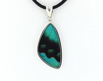 Blumei Butterfly Wing Pendant (Medium)