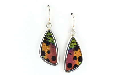 Madagascar Sunset Moth Wing Earrings (Small)