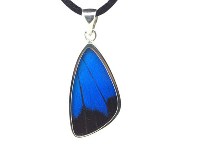 Blue Mountain Butterfly Wing Pendant (Medium)