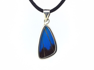 Blue Mountain Butterfly Wing Pendant (Small)