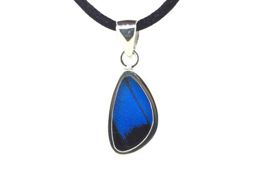 Blue Mountain Butterfly Wing Pendant (X-Small)