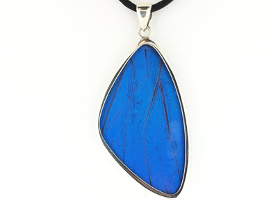 Blue Morpho Butterfly Wing Pendant (X-Large)