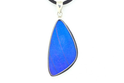 Blue Morpho Butterfly Wing Pendant (Large)