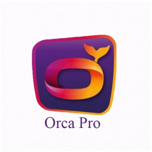 Abonnement IPTV ORCA PRO+ 12 MOIS ANDROID SMART TV