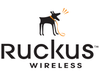 Ruckus Group Training: 5 Days LIVE Instructor Led Training, For up to 12 or 20 persons, at Customer Site.