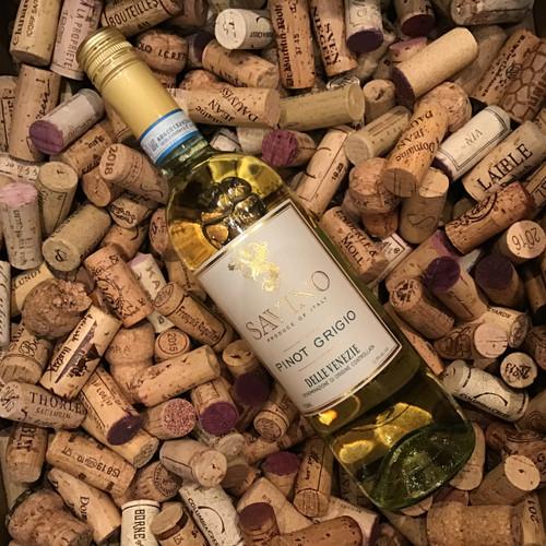 Savino - Pinot Grigio - Delle Venezie