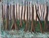 Phil's Woods