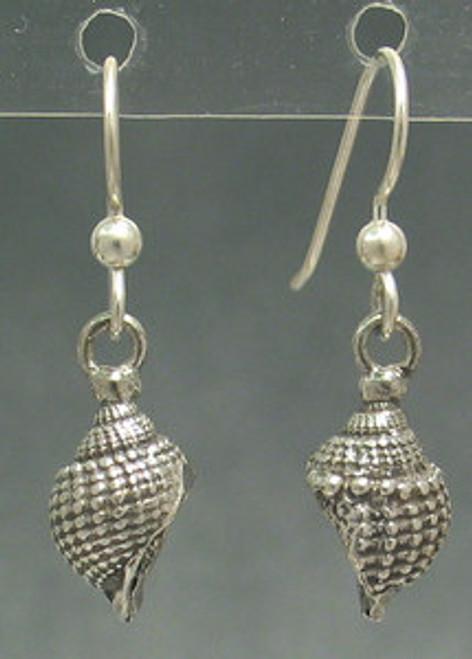 Nutmeg Shell Sea Shell Drop Dangles Beachcomber Series Earrings in Sterling Silver