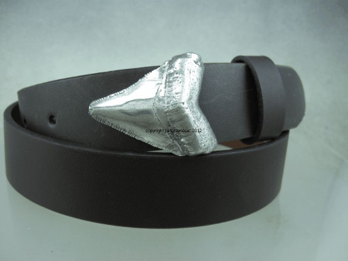 Sharks tooth buckle 1 1/4 inch belts  in sterling silver with no patina shown on a brown leather strap