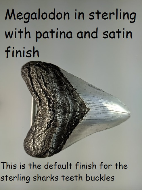 The top root part of the tooth is antiqued in this picture . This is the default satin finish