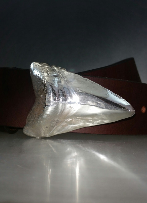 Sharks Tooth Buckle For 1.5 Inch Belts in Sterling Silver  shown on a 1.5 inch belt