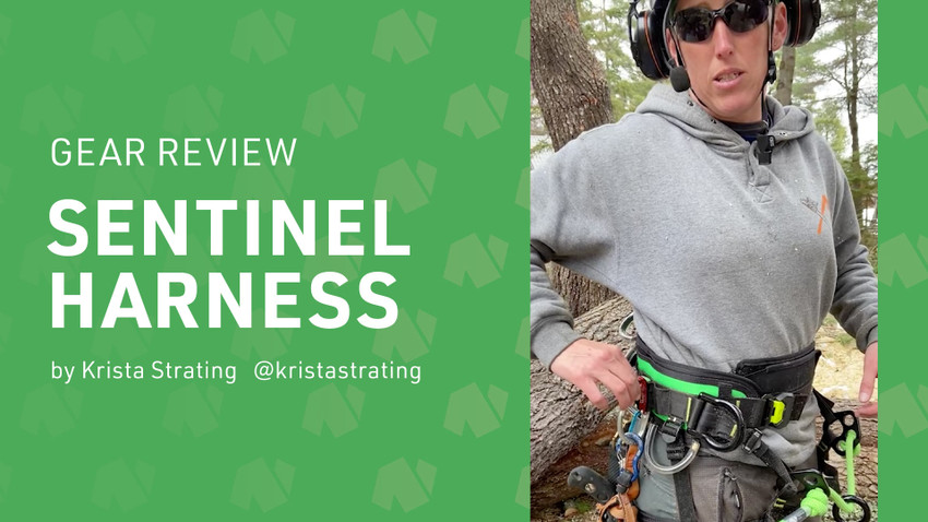 Gear Review: Sentinel Saddle with Krista Strating