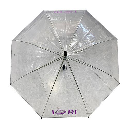 Clear/Transparent Umbrella with Quahog Design
