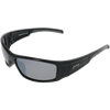 Shiny Black Frame Grey Rubber Tips Smoke Lens