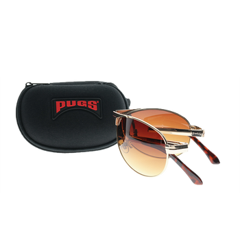 Folding Glasses with Carrying Case