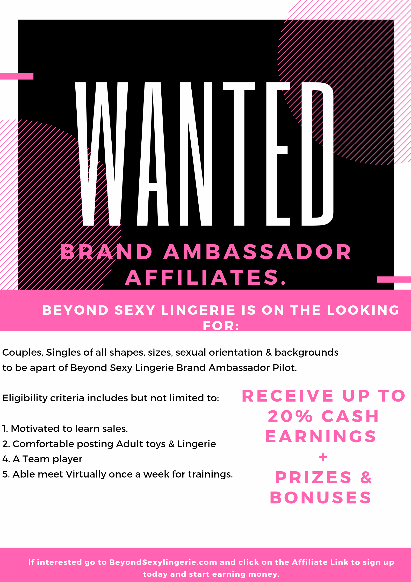Become a BSL Team member and earn $$$