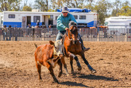 """From """"barely able to trot"""" to galloping around the Buffel paddock"""