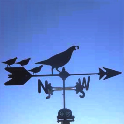 Quail with Chicks Silhouette Steel Weathervane