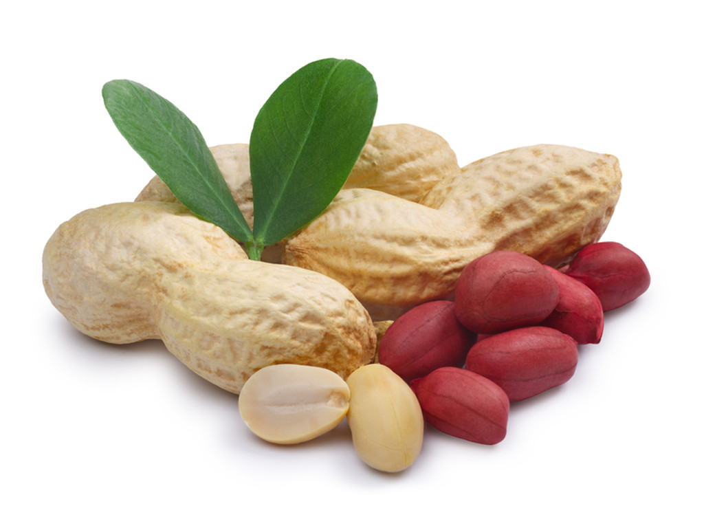 Blanched Peanuts or Unblanched Peanuts- What's the Difference?
