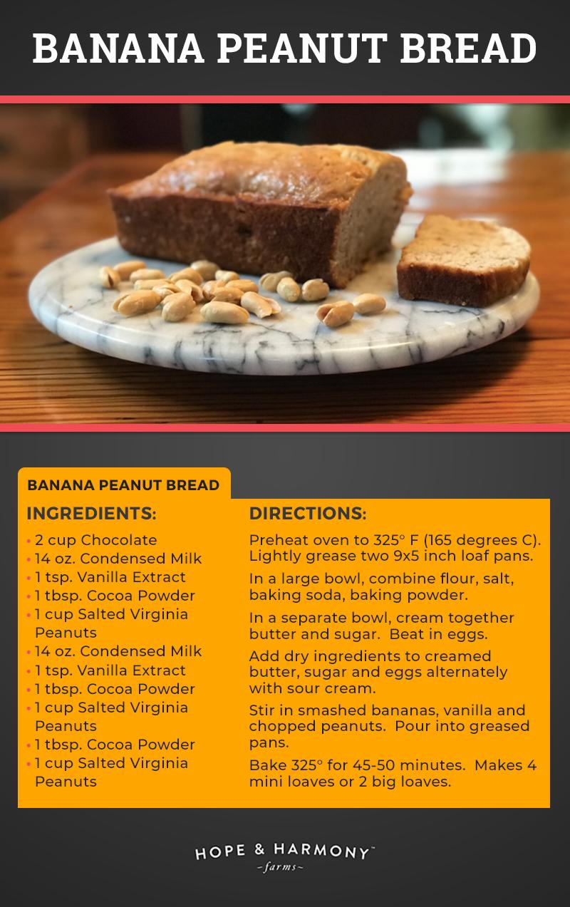 banana-peanut-bread-v2.jpg
