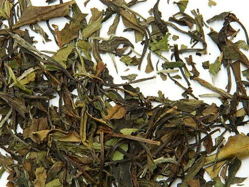 Art of Tea Pai Mu Tan (White Tea)