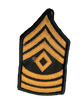 E-8 1SG Female GOLD on GREEN CHEVRONS