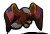 USA Flag Eagle Patch 13.5X10''