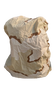 Military Issue Nylon Rain Pack Cover
