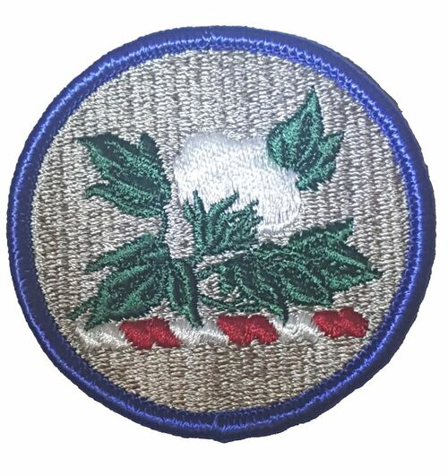 Military Issue Alabama National Guard Class A Patch