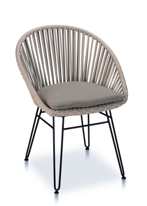 Brooklyn Dining Arm Chair, Light Taupe with Cedar Cushion - Set of 2