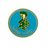 Cayman Islands Pin