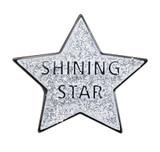 Shining Star Lapel Pin