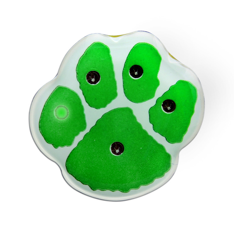 "PAW-LIGHT 1"" (Green/White) Lapel Pin"