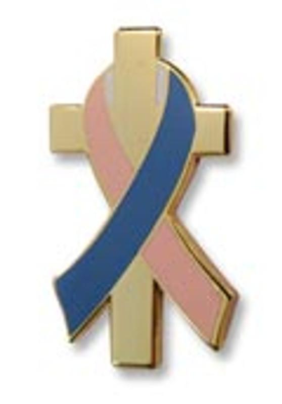 Pink & Blue Awareness Ribbon Lapel Pin