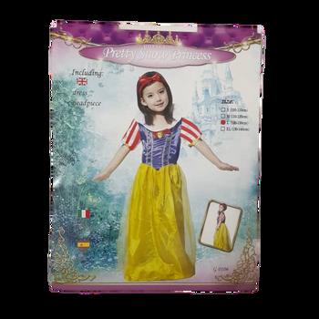 Pretty Snow Princess  costume